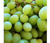 Precooling grapes reduces browning, increases shelf-life